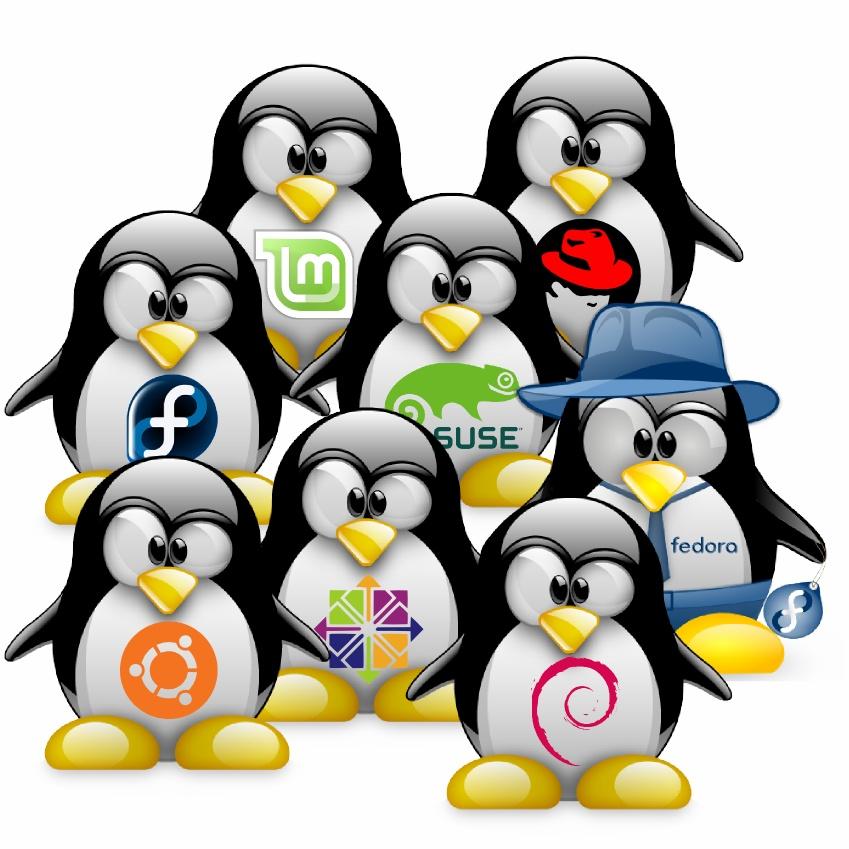 distribution linux